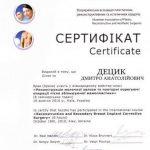 diploma sertif 07 - Децык Дмитрий Анатольевич