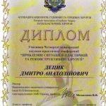 diploma sertif 17 - Децык Дмитрий Анатольевич