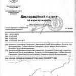 diploma sertif 21 - Децык Дмитрий Анатольевич