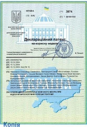 diploma sertif 22 - Децык Дмитрий Анатольевич