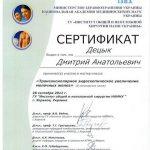 diploma sertif 30 - Децык Дмитрий Анатольевич