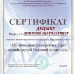 diploma sertif 41 - Децык Дмитрий Анатольевич